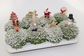 Hebe Christmas Boys T 12 mit Schnee, Glitter & Dekostecker • VE 8